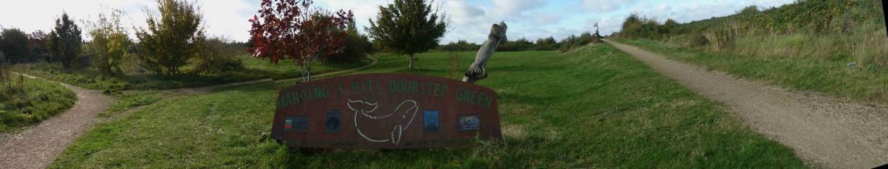 Harding's  Pits  Doorstep  Green  in  King's  Lynn